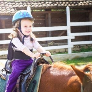 Read Article Understanding Equine-Facilitated Learning